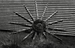 Cart wheel and corrugated iron, west coast of North Island